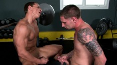Two beautiful young studs playing out their gay fantasies in the gym