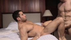 Two exciting gay lovers fulfilling their sexual desires on the bed