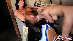 The hotties surrender their sweet pussies to one another and experience pure pleasure