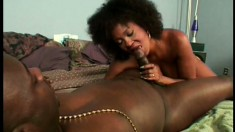 Stacked chocolate milf takes a long black shaft in her hairy snatch